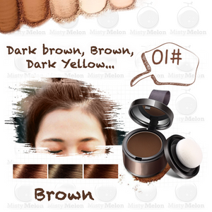 Magical Multi-Functional Hair Shadow