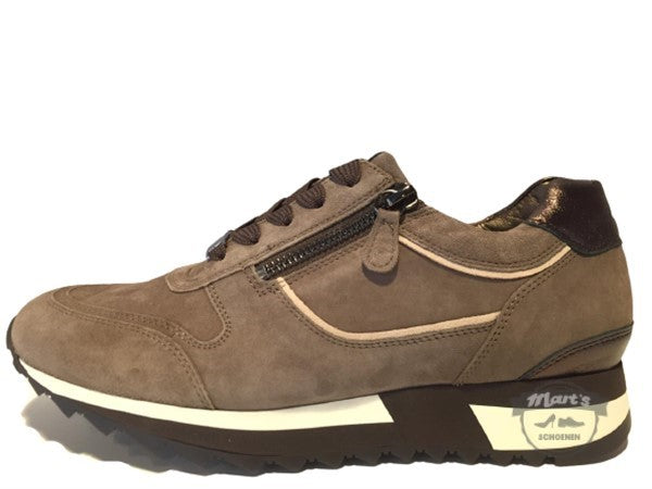 Taupe Sneaker - Hassia - 302022 1999