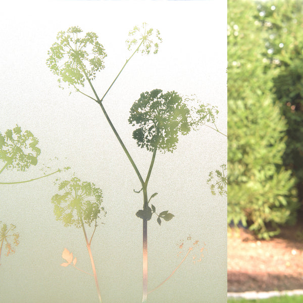 Dandelion Art Glass Window Film