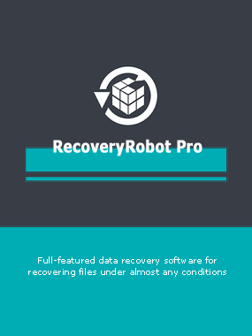 RecoveryRobot Pro 2019 Home For PC