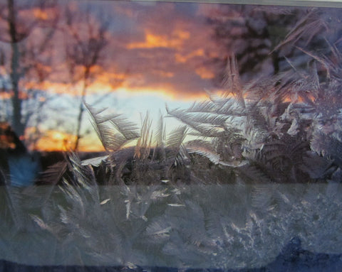 Nature's Art, digital photograph by Maria Howe