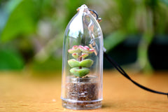 Baby's Necklace Succulent Charm Strap - WearItMiniPlants  - 1