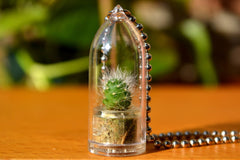 Snow White Cactus Plant Necklace - WearItMiniPlants  - 1