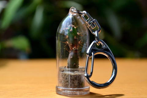 Prickly Pear Cactus Keychain