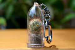 Shining Knight Cactus Keychain - WearItMiniPlants  - 1