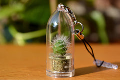 Snow White Cactus Charm Strap - WearItMiniPlants  - 1