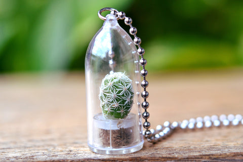 Snowball Cactus Plant Necklace