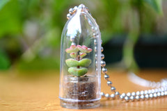 Baby's Necklace Succulent Necklace - WearItMiniPlants  - 1