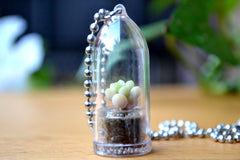 Baby Donkey Tail Succulent Necklace - WearItMiniPlants  - 1