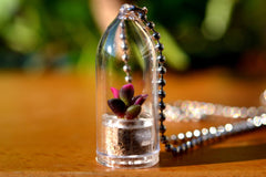 Sunrise Succulent Plant Necklace - WearItMiniPlants  - 1