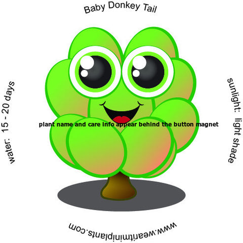 Baby Donkey Tail Caricature Magnet