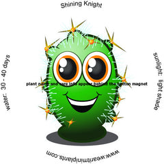Shining Knight Caricature Magnet - WearItMiniPlants