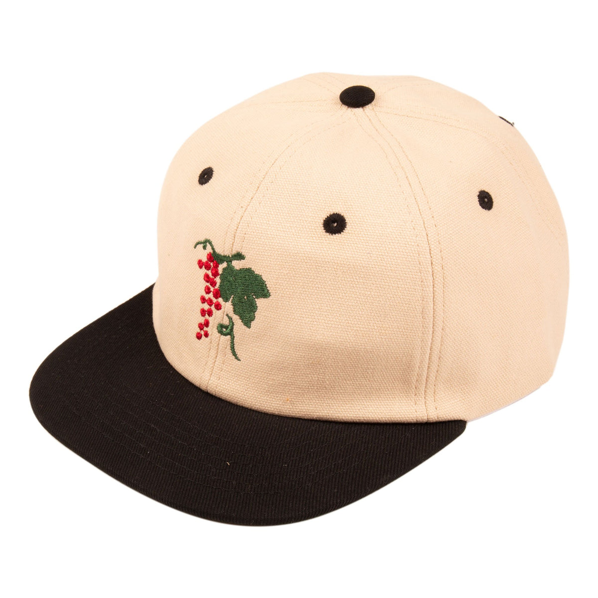 Passport Life of Leisure 6 Panel Cap