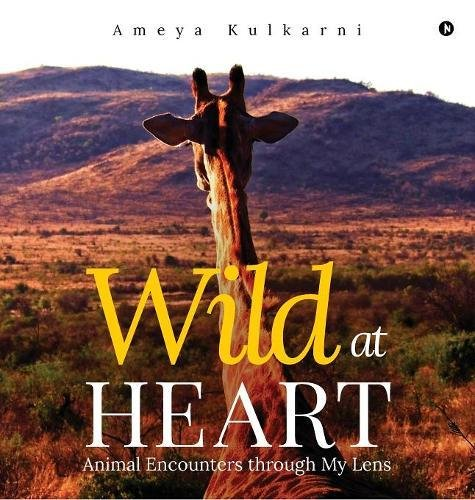 Wild at Heart: Animal Encounters through My Lens