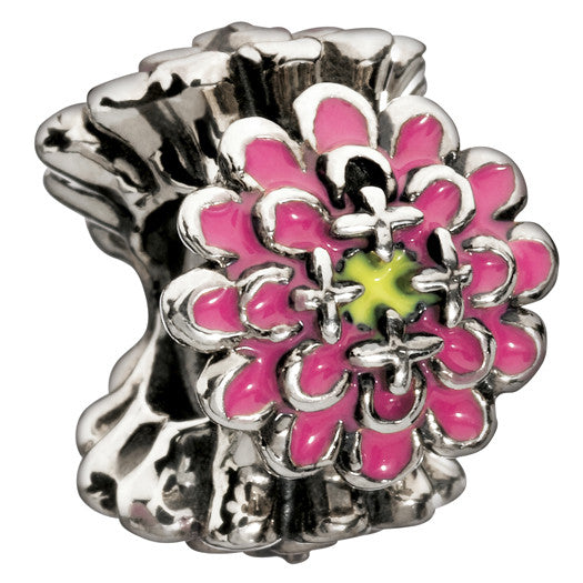 Chamilia Charm Blooming Zinnia Pink