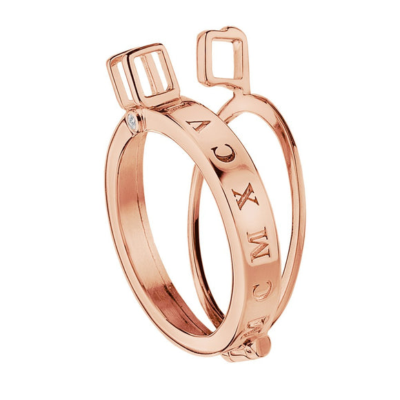 Emozioni Coin Keeper Rose Gold Plated DP484