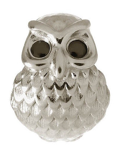 Endless Jewellery Charm Owl Silver