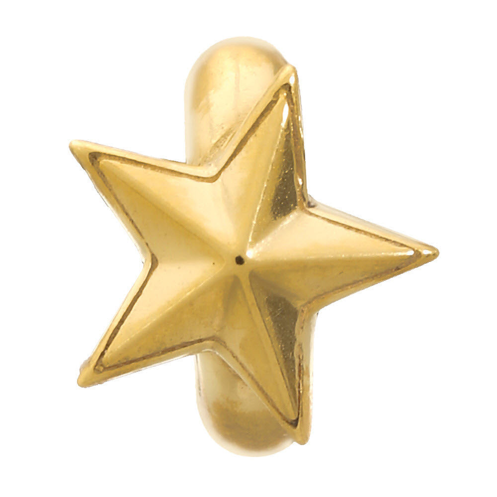 Endless Jewellery Charm Rising Star Gold