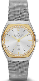 Skagen Watch Ladies SKW2050