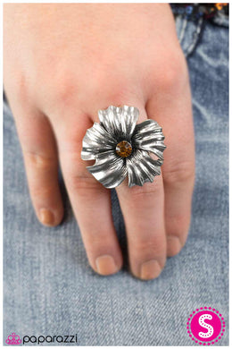 Take Your Pick - Paparazzi Brown Ring - BlingbyAshleyNicole