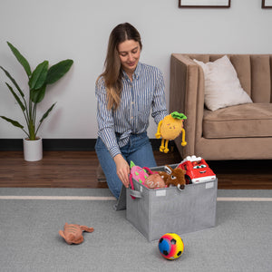 Storage Bins With Lids