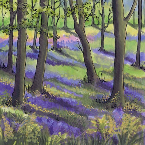 Bluebells by Fiona Turley