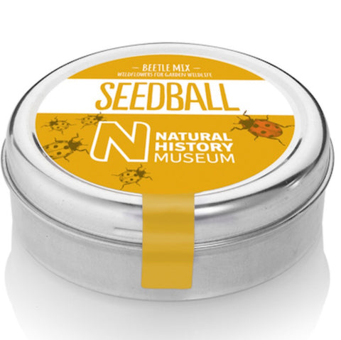 Seedball - Beetle Mix