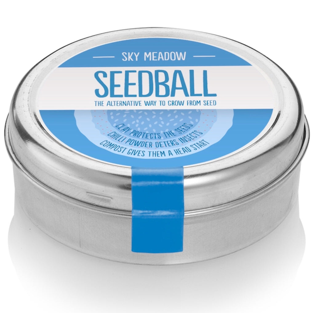Seedball- Sky Meadow