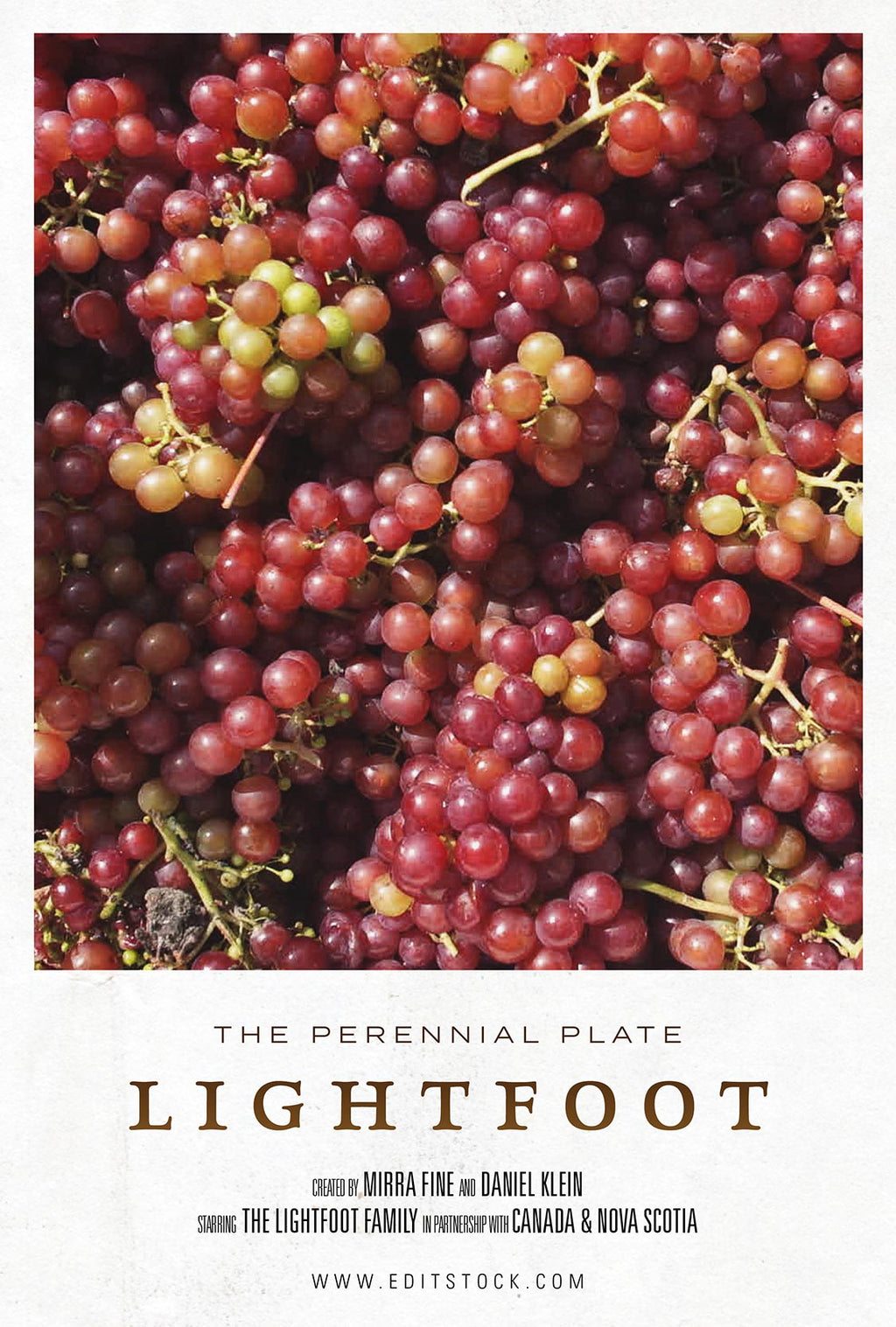 Lightfoot -- EditStock Project