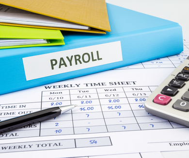 Payroll Services (Free Quote)