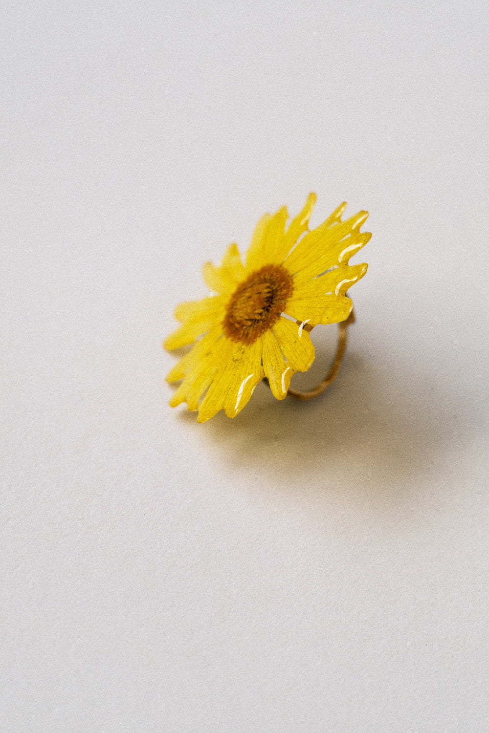 Amarillo Ring