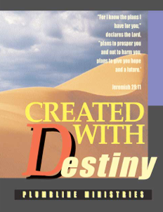 Vision into Destiny