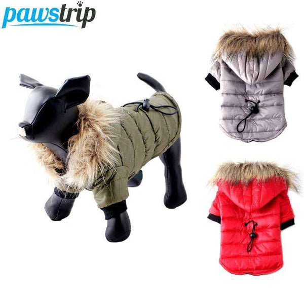 Winter Small Dog Coat Jacket,pet products,Uunoshopping