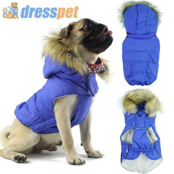 Winter Small Pet Dog Clothes,pet products,Uunoshopping