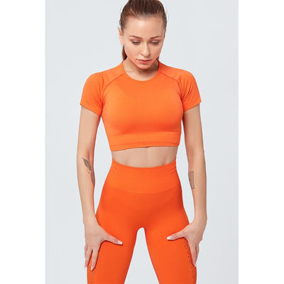 Women Seamless Sportswear Yoga Top Set Gym Clothing Fitness Bra+Leggings+Cropped Shirts Sport Suit Tracksuit Active Wear Female