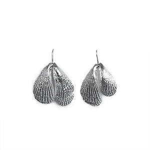 Silver Double Shell Earrings | SMITH Jewellery
