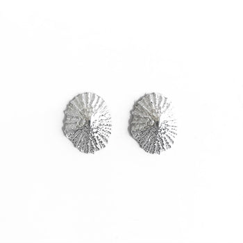 Limpet Studs | SMITH Jewellery