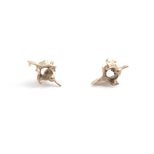 Tiny Vertebrae Gilt Studs | SMITH Jewellery