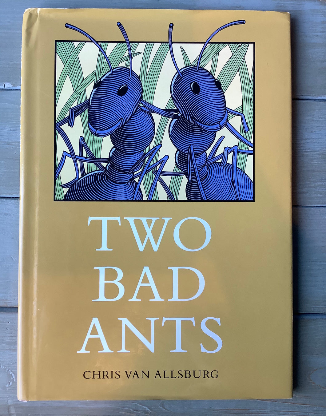 Two Bad Ants - USED