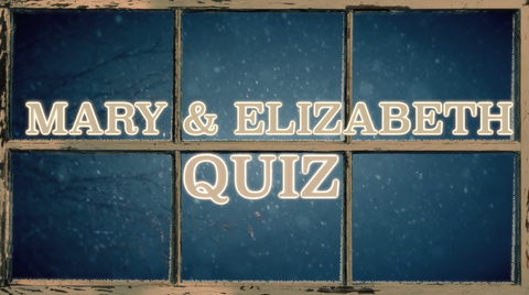 Mary and Elizabeth - Bible Quiz