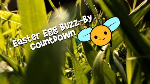 Easter Egg Buzz-By Countdown