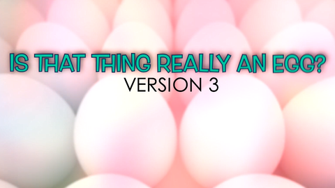 Is That Thing Really an Egg, Version 3