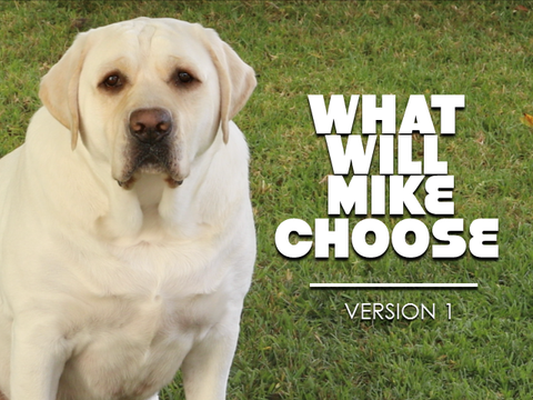 What Will Mike Choose - Version 1