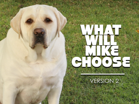 What Will Mike Choose - Version 2