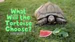 What Will the Tortoise Choose - Version 1