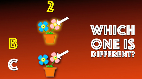 Which One is Different - Version 4