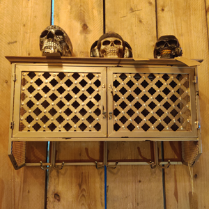 Metal Storage Cabinet with Coat Hangers