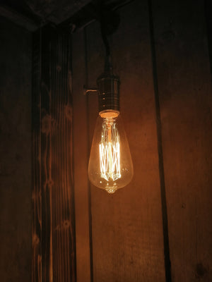 Industrial Style Hanging Log Lamp