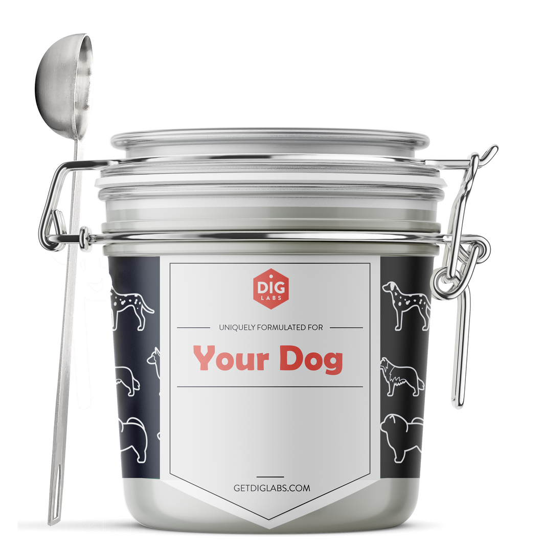 Pup Sup for your Favorite Pup - DIG Labs - Makers of Pup Sup, The Dog Nutrition Supplement