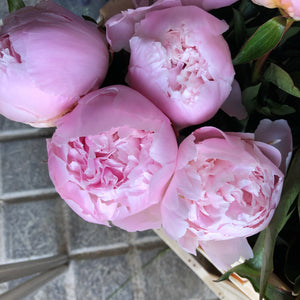 29/5/20 Peony and May flowers Bouquet 100% British grown blooms
